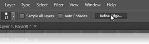 2 thumb9 What is Refine Edge tool in Photoshop and how to use it | TrickyPhotoshop learn photoshop