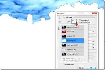 3_thumb8 - What is Refine Edge tool in Photoshop and how to use it | TrickyPhotoshop