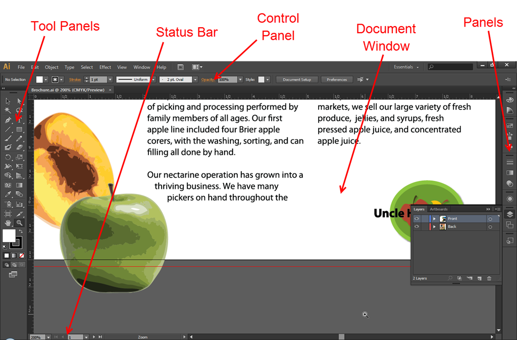 Understanding The Workspace: Adobe Illustrator | TrickyPhotoshop