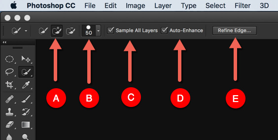 5 - Day 10: What is Quick Selection Tool in Photoshop