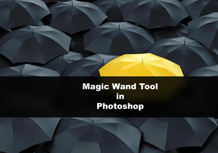 Day 11: What is Magic Wand Tool in Photoshop