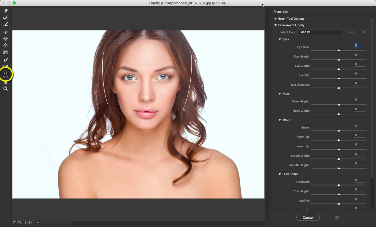 1 - Face Liquify Tool in Photoshop- Change that Face Structure