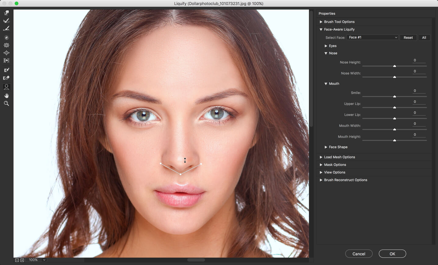 13 - Face Liquify Tool in Photoshop- Change that Face Structure