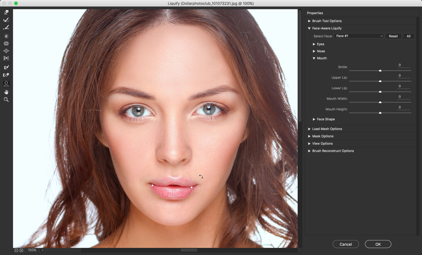 16 - Face Liquify Tool in Photoshop- Change that Face Structure