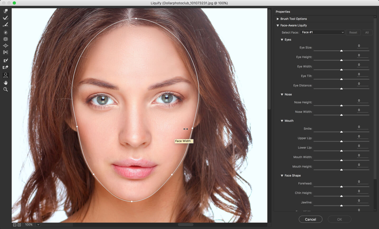 2 - Face Liquify Tool in Photoshop- Change that Face Structure