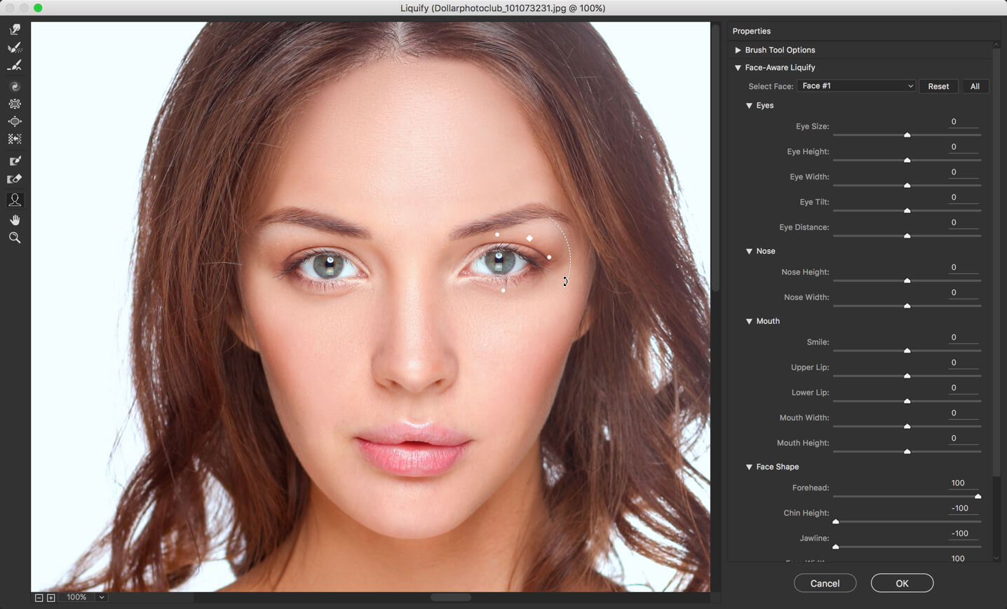 7 - Face Liquify Tool in Photoshop- Change that Face Structure