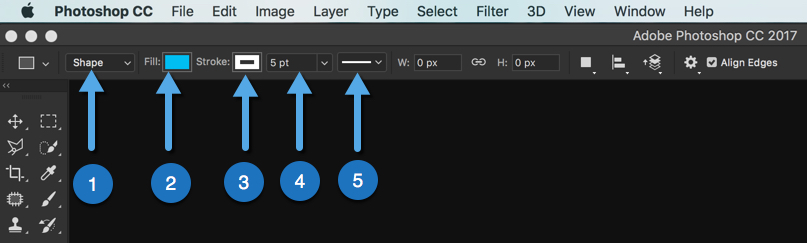 6 - Day 21: Photoshop: Shape Tool - Your Guide