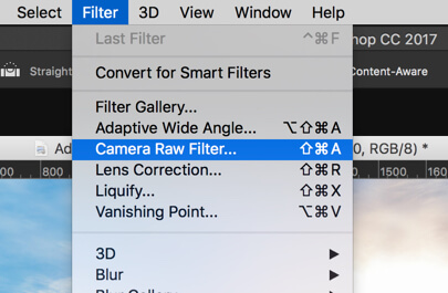 1 - Day 22 - The Camera Raw Filter in Photoshop: Part 1