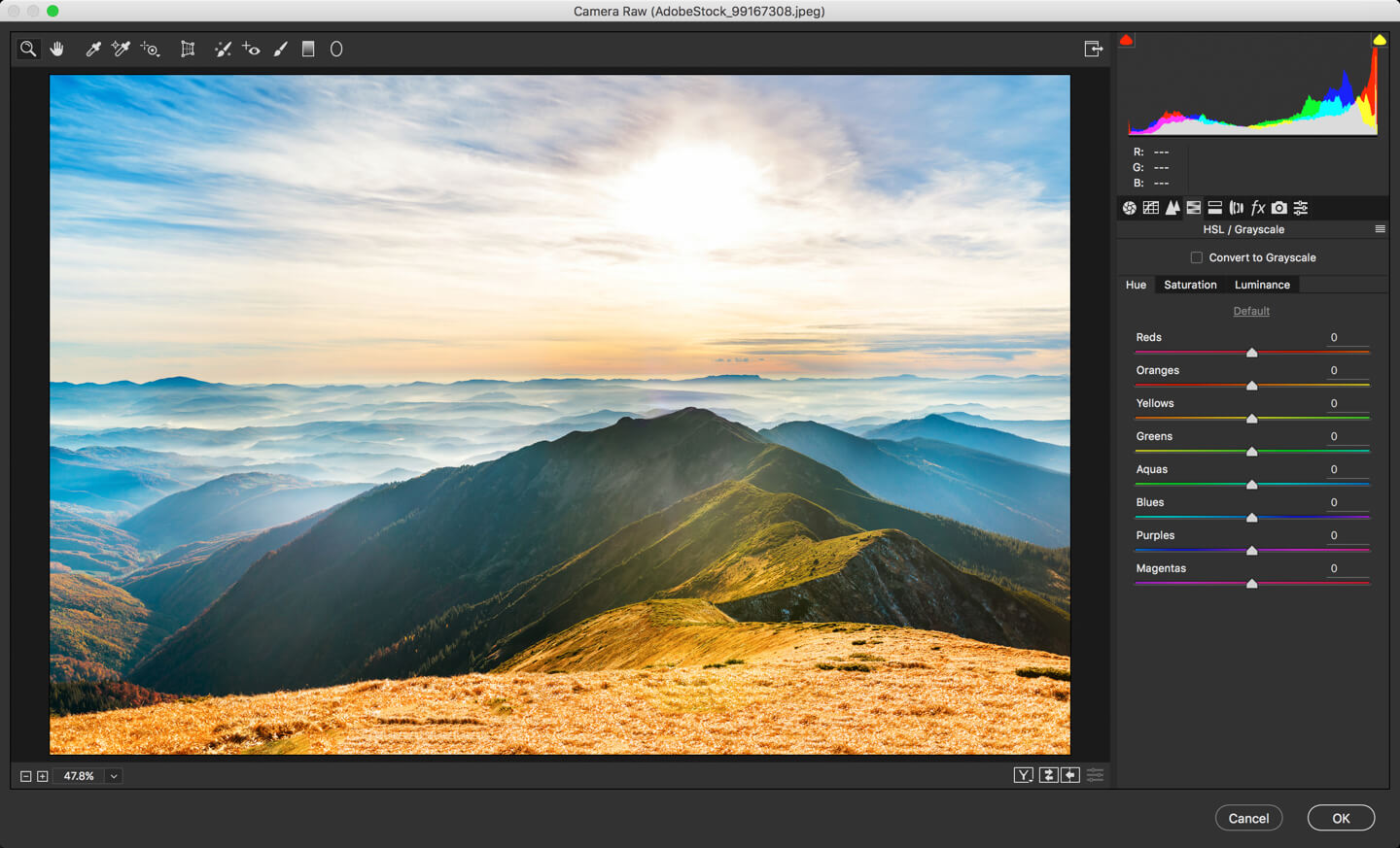 1 - DAY 23 – THE CAMERA RAW FILTER IN PHOTOSHOP: PART 2