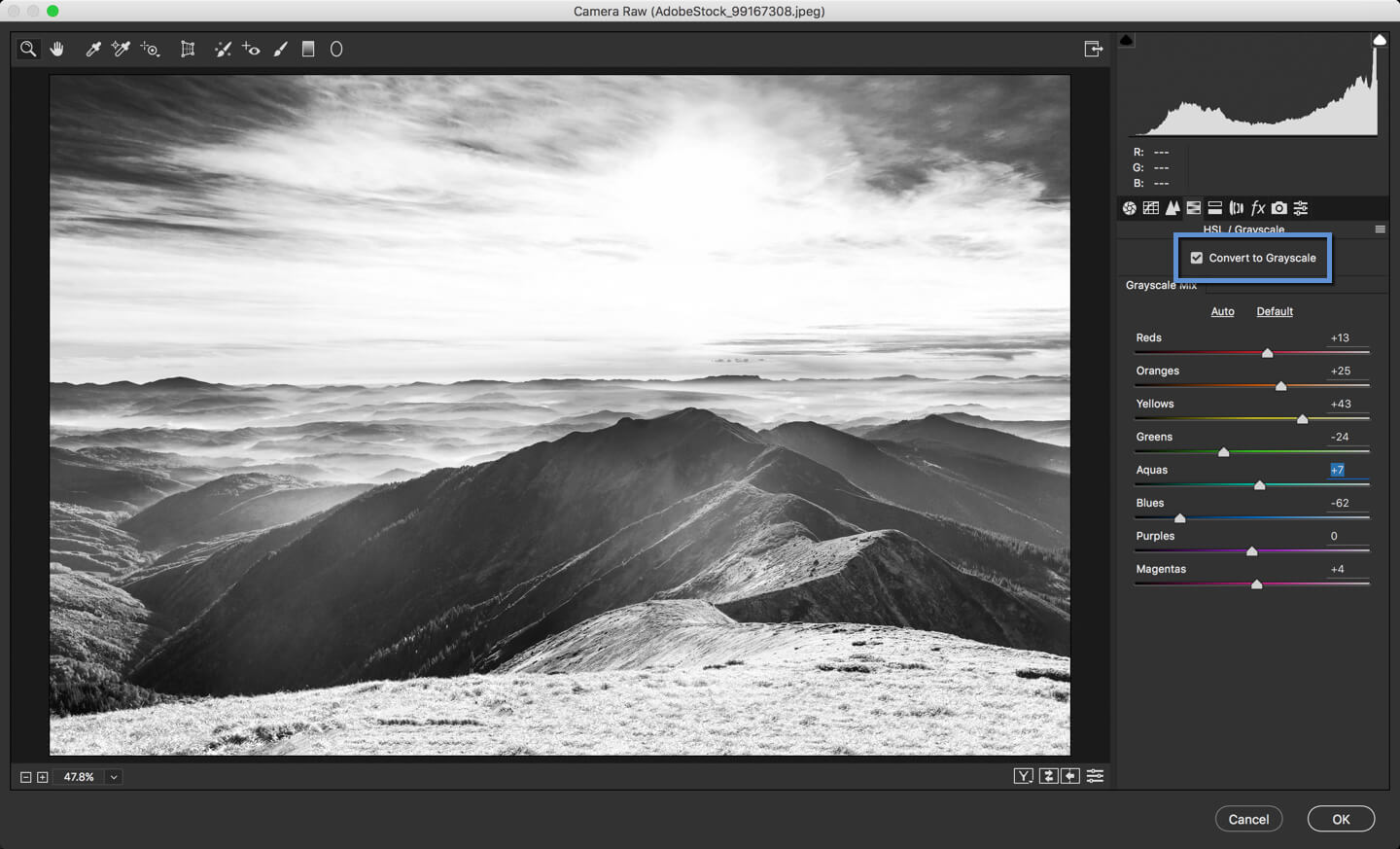2-1 - DAY 23 – THE CAMERA RAW FILTER IN PHOTOSHOP: PART 2