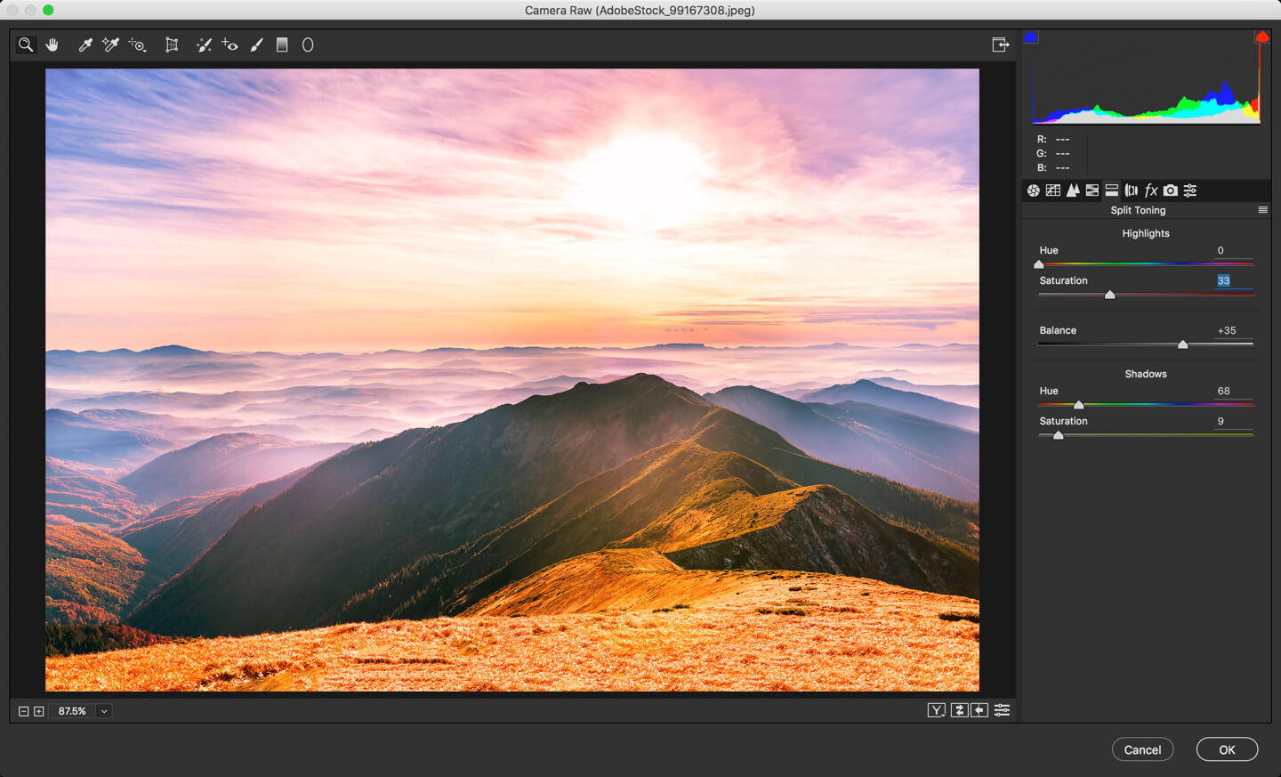 4 - DAY 23 – THE CAMERA RAW FILTER IN PHOTOSHOP: PART 2