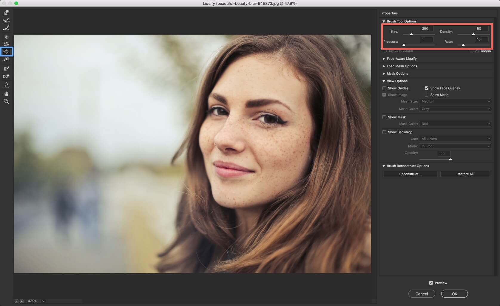 2 - 1 Step Tutorial to Change Eye Size in Photoshop