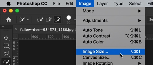 2-3 - The Ultimate Guide to Enlarge Photos in Photoshop