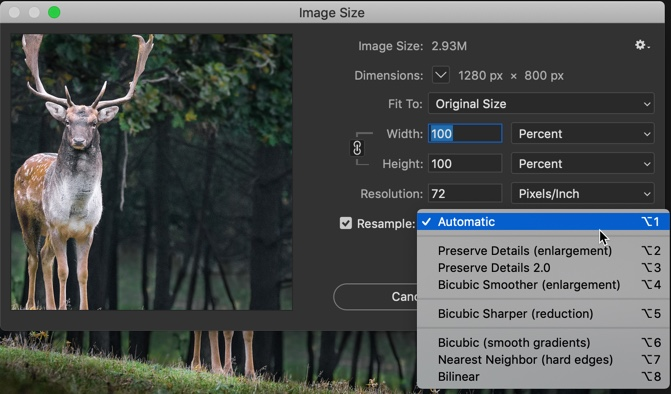 6-3 - The Ultimate Guide to Enlarge Photos in Photoshop