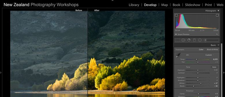 Lightroom Vs Photoshop Which Is Better Trickyphotoshop