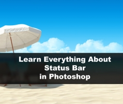 Learn Everything About Status Bar: Document Info Central in Photoshop