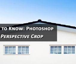What is Perspective Crop Tool in Photoshop and How to Use It?